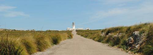 De camino al Faro